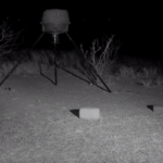 West Texas Deer Cam